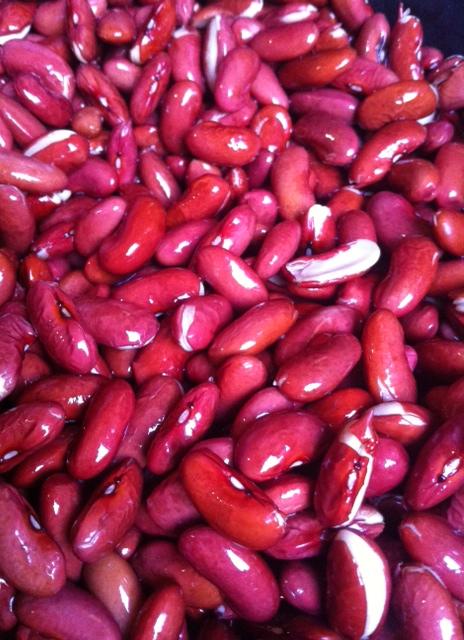 beans14